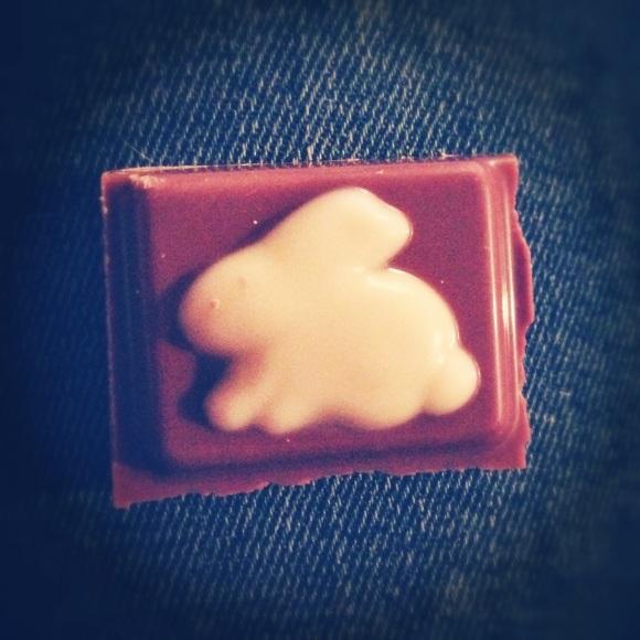 bunny chocolate